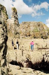 Pembroke_Coast_nr_St_Govan's_Head_014.jpg