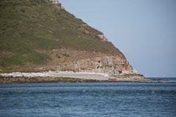 Puffin-Island-006.jpg