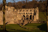 Rievaulx_Abbey-056