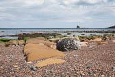 Saltwick Bay -004