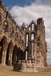 Whitby_Abbey-010.jpg
